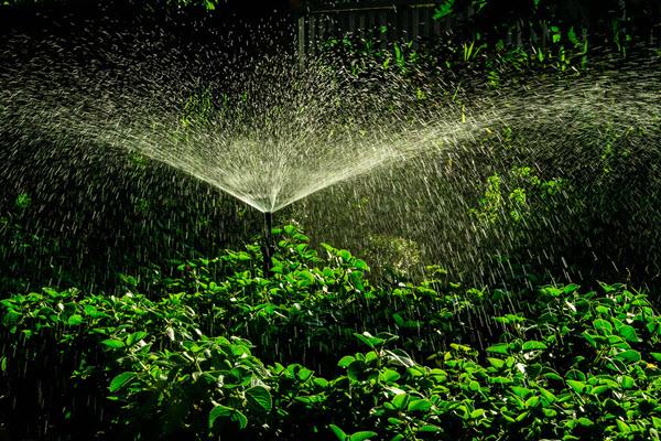 Gartenbewässerung Willich